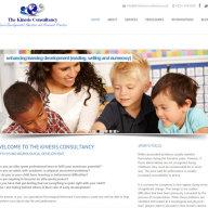 Kinesis Consultancy website