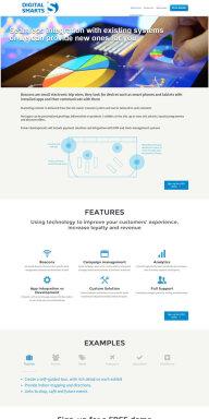 Digital Smarts website